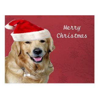 Feliz Natal do golden retriever Cartão Postal