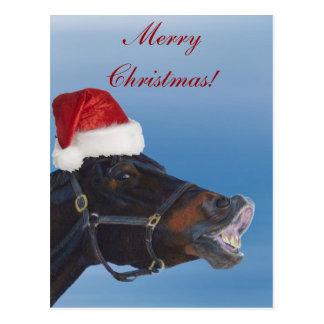 Feliz Natal engraçado do pônei Cartão Postal
