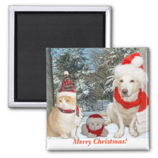 Feliz Natal! Ímã Quadrado
