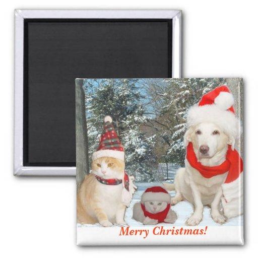 Feliz Natal! Imã De Refrigerador