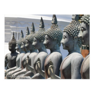 Fileira do cartão das esculturas de Buddha