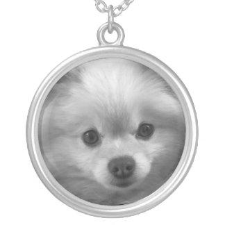 Filhote de cachorro adoràvel bonito de Pomeranian Colar Com Pendente Redondo