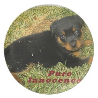 filhote de cachorro do rottweiler do pureinnocence pratos