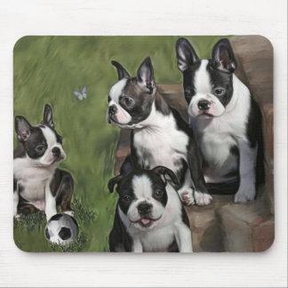 Filhotes de cachorro de Boston Terrier tapetes para ratos