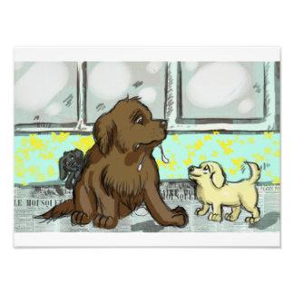 Filhotes de cachorro! impressão de foto
