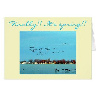 Finalmente!! É primavera!! Cartão Comemorativo