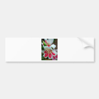 flor 1 adesivo