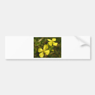 Flor amarela adesivo para carro