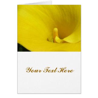 Flor amarela do lírio de Calla Cartão