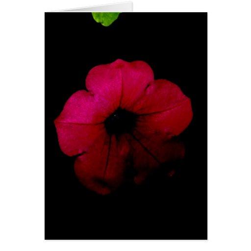 Flor aniversário-cor-de-rosa Portuguesa-feliz Cartões