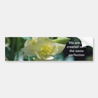 Flor aquilégia bonito e significado adesivo para carro