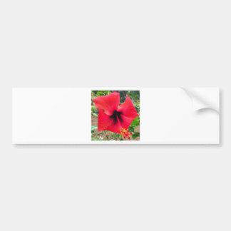 flor adesivo