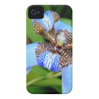 Flor azul tigrada capas iPhone 4 Case-Mate