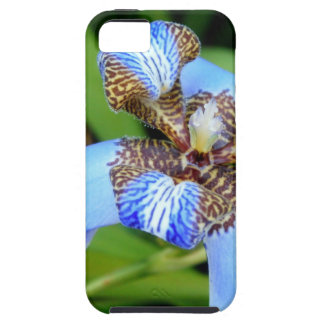 Flor azul tigrada iPhone 5 capas