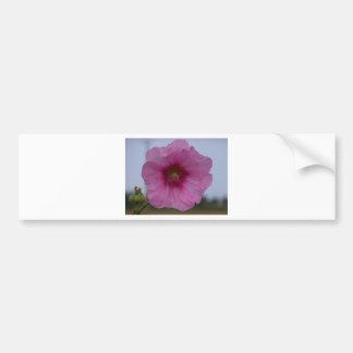 Flor bonita adesivo para carro