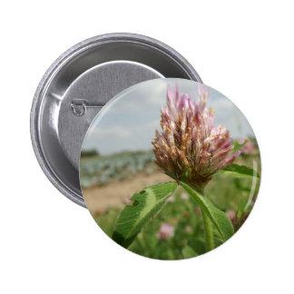 flor boton