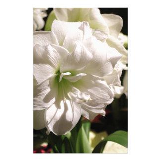 Flor branca papelaria