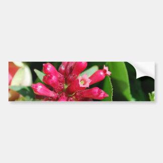 Flor - buquê - rosa adesivos