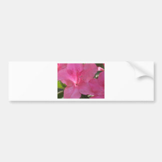 Flor cor-de-rosa adesivos