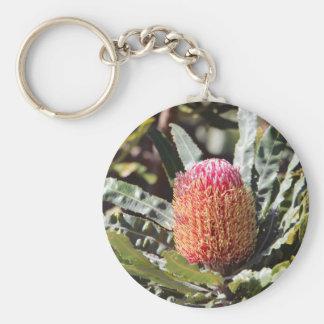 Flor cor-de-rosa do Banksia Chaveiro