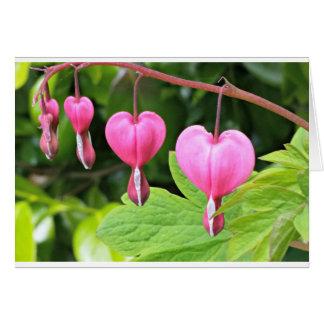 Flor cor-de-rosa dos corações de sangramento, cartão comemorativo