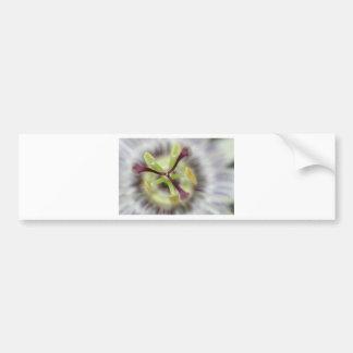 flor da paixão, da coleção do presente da flor adesivo
