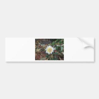 Flor da queda adesivo