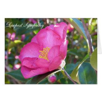 Flor da simpatia cartão comemorativo