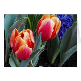 Flor da Tulipa-Um do amor Cartão Comemorativo