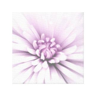 Flor de florescência delicada impressão em tela