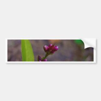Flor de giro adesivo