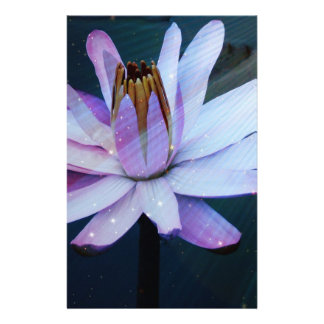 Flor de Lotus Panfleto Personalizado