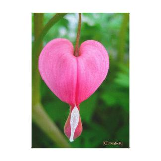 Flor do coração de sangramento impressão de canvas esticadas