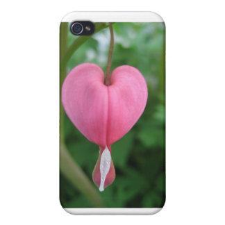 Flor do coração de sangramento iPhone 4 capa