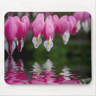 flor do coração de sangramento mousepad