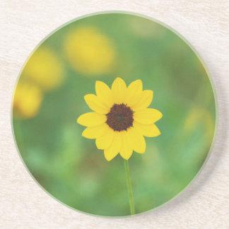 flor do dia ensolarado porta copos de arenito