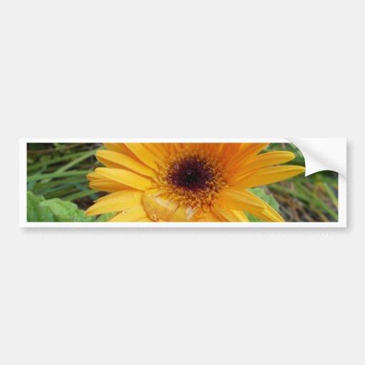 Flor do jardim adesivos
