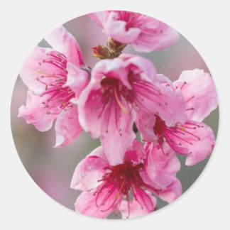 flor do pêssego adesivo