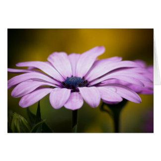 Flor, gota do cartão de cumprimentos da chuva