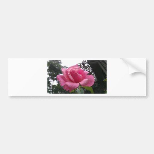 Flor lindo do rosa do rosa na flor! adesivos