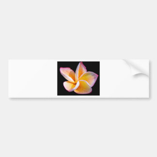 Flor macro adesivo