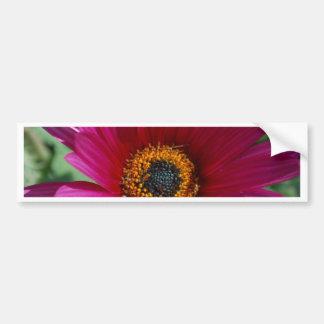 Flor magenta adesivo