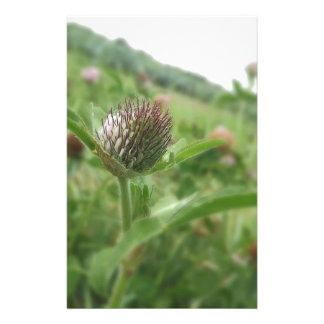 flor papelaria