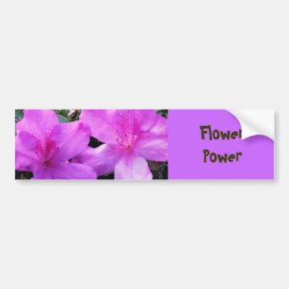 Flor, poder adesivos