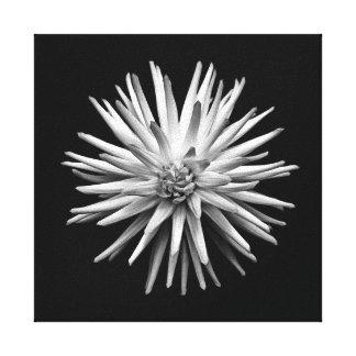 Flor preto e branco impressão em tela