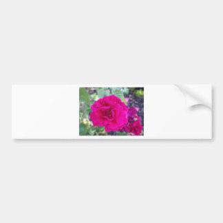 Flor roxa adesivos