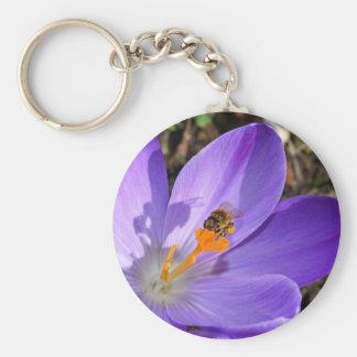 Flor roxa do açafrão e uma abelha chaveiro