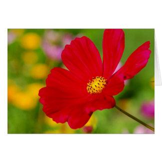 Flor vermelha cartão comemorativo