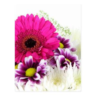 Floral cor-de-rosa cartão postal