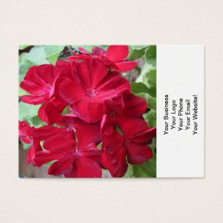 Floral vermelho da planta do gerânio cartão de visitas